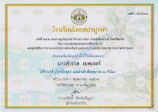 Certificates Foot massage - Thai